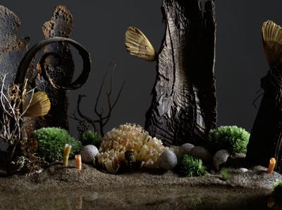 Barbara Schmidt, Ohne Titel, 2008
